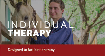 Individual Experiential Therapy