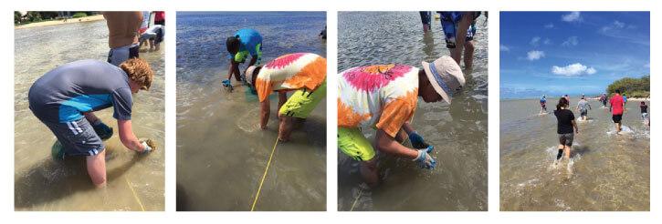 DA-Service-Hawaii-clean-oceans